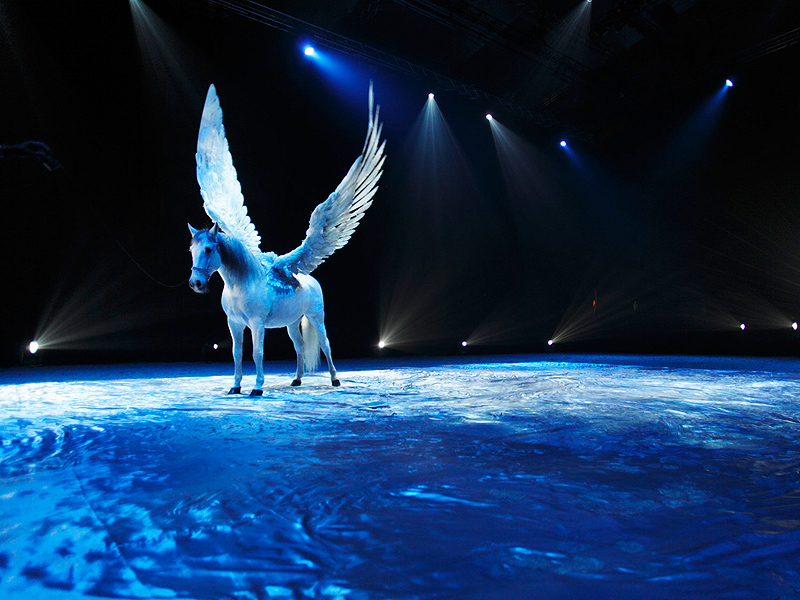 Show Impressionen: Illusion oder Realität? The flying Horse . . .